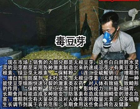 中国有毒食品大全,毒豆芽